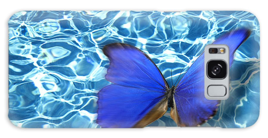 Animals Galaxy S8 Case featuring the photograph Butterfly by Tony Cordoza
