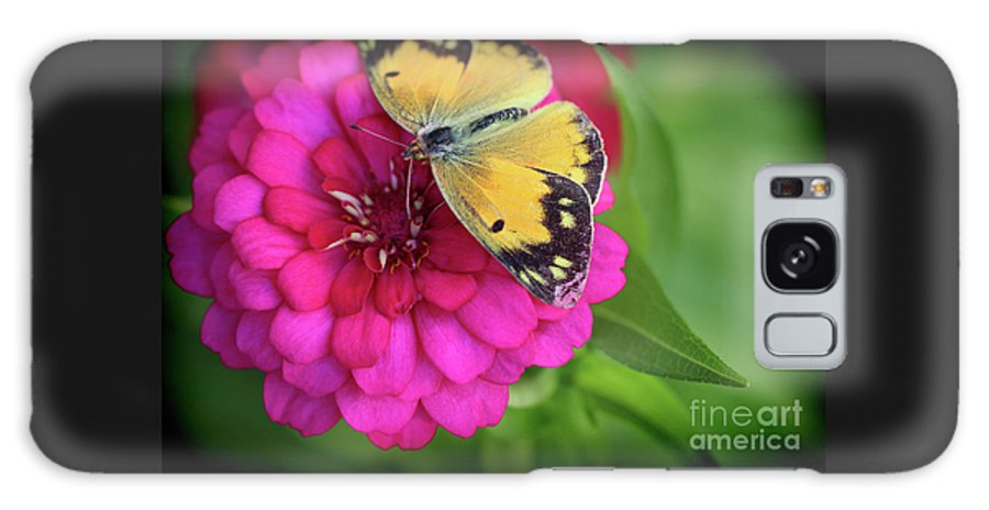 Butterfly Galaxy S8 Case featuring the photograph Butterfly Whispers by Karen Adams