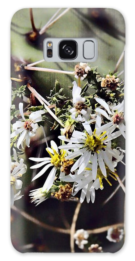 Cactus Galaxy S8 Case featuring the photograph Cactus Flowers by Scott Wyatt