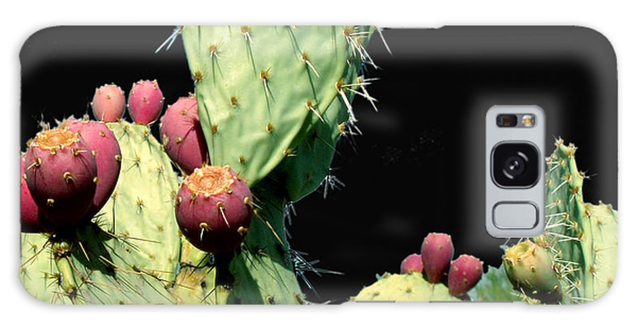 Cactus Galaxy Case featuring the photograph Cactus Two by Wayne Potrafka