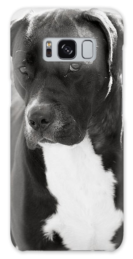 Betsy Lamere Galaxy S8 Case featuring the photograph Caleb by Betsy LaMere