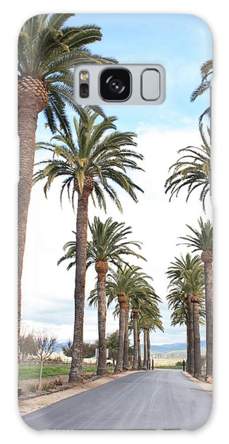 Palm Trees Galaxy S8 Case featuring the photograph California Dreaming by Carol Groenen
