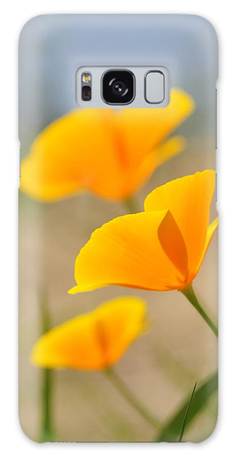 Wildflowers Galaxy S8 Case featuring the photograph California Poppies by Lara Ellis