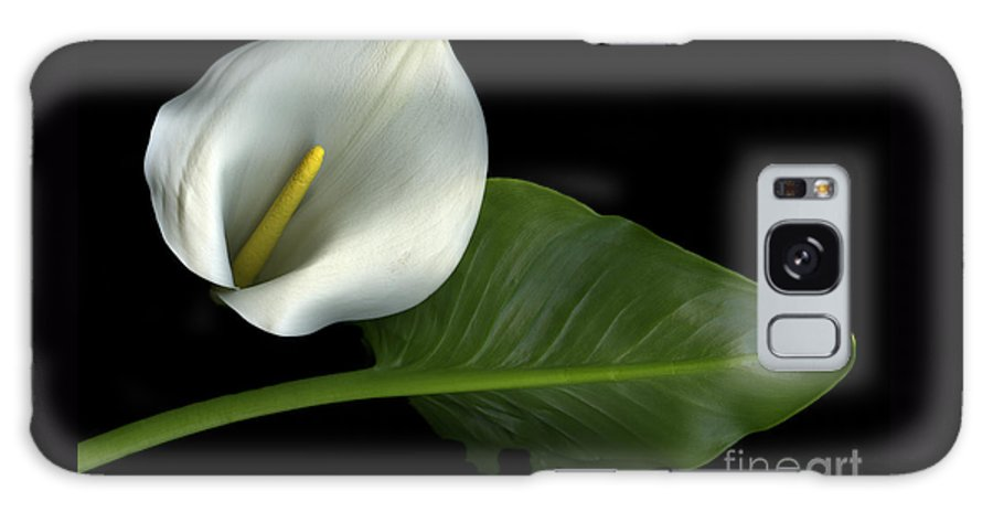 Scanography Galaxy Case featuring the photograph Calla Lily by Christian Slanec
