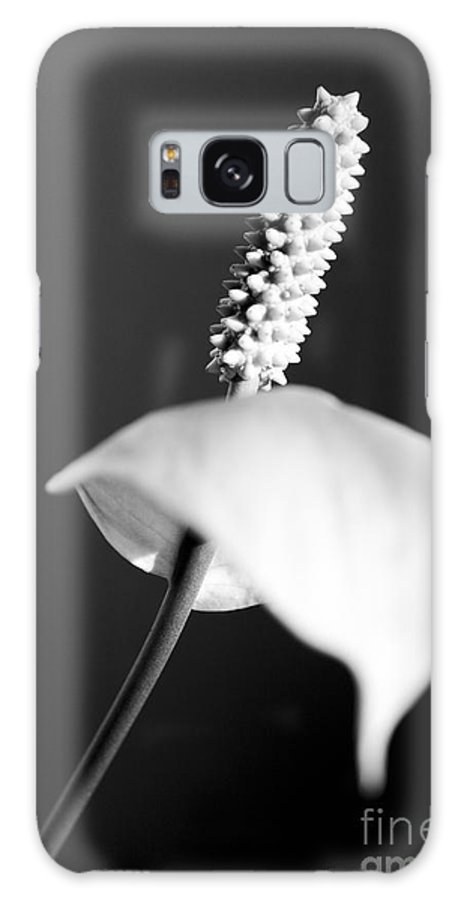 Black & White Galaxy S8 Case featuring the photograph Calla Lily by Tony Cordoza
