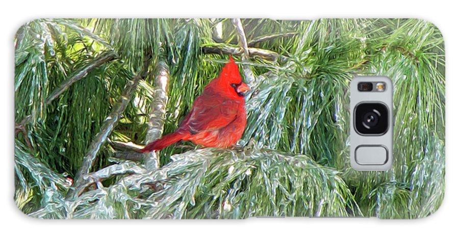 Cardinals Galaxy S8 Case featuring the photograph Cardinal On Ice by John Freidenberg