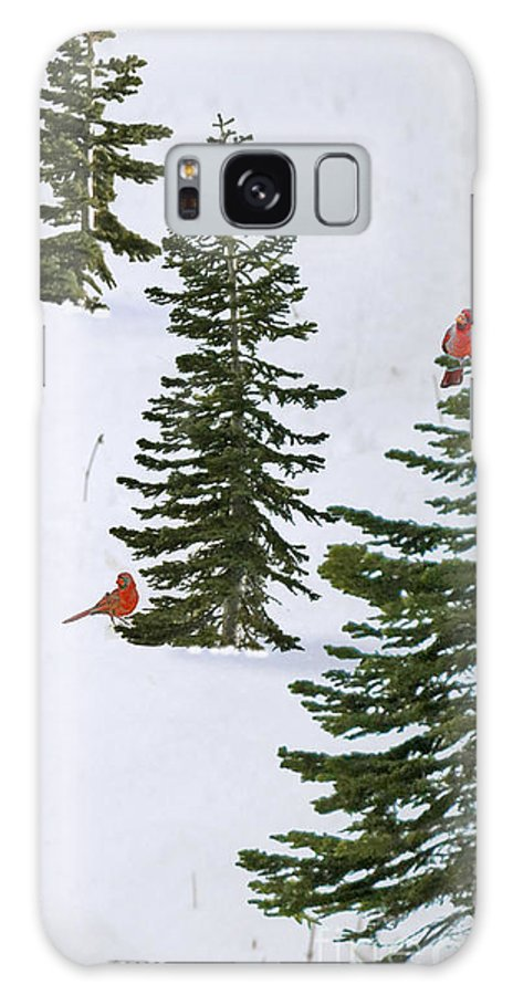 Cardinal Trees Birds Snow Winter Holiday Christmas Solstice Galaxy S8 Case featuring the photograph Cardinal Trees by Lozja Mattas