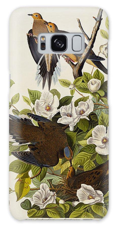 Carolina Turtledove. Mourning Dove Galaxy S8 Case featuring the drawing Carolina Turtledove by John James Audubon