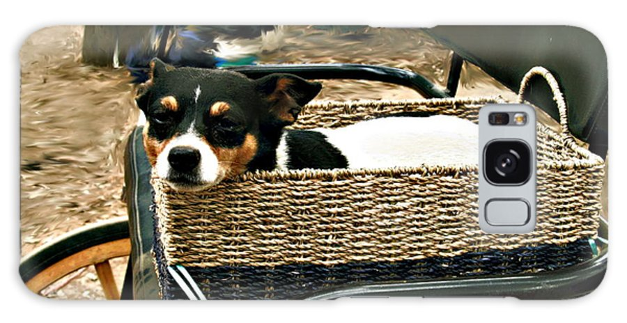 Dog Galaxy S8 Case featuring the photograph Carriage Dog by Amie Ebert