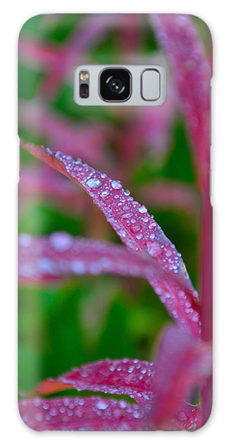 Autumn Galaxy S8 Case featuring the photograph Cascade Autumn Leafs 11 by Noah Cole