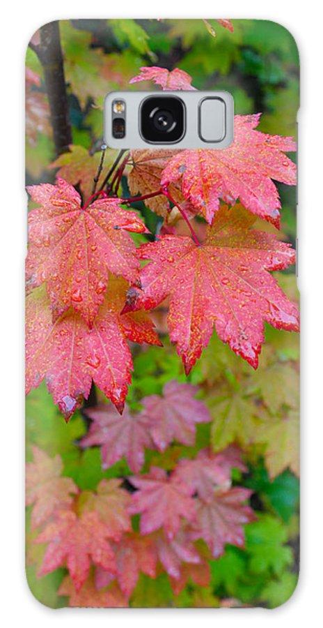 Autumn Galaxy S8 Case featuring the photograph Cascade Autumn Leafs 4 by Noah Cole