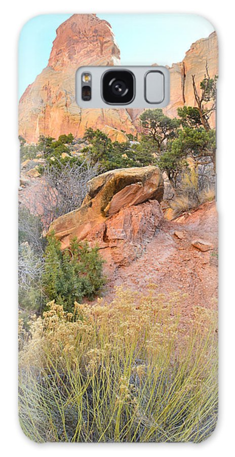 Grand Staircase Escalante National Monument Galaxy S8 Case featuring the photograph Cathedral by Ray Mathis