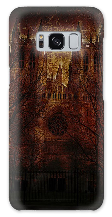 Washington Galaxy S8 Case featuring the photograph Caught Up In The Rapture by Shelley Neff