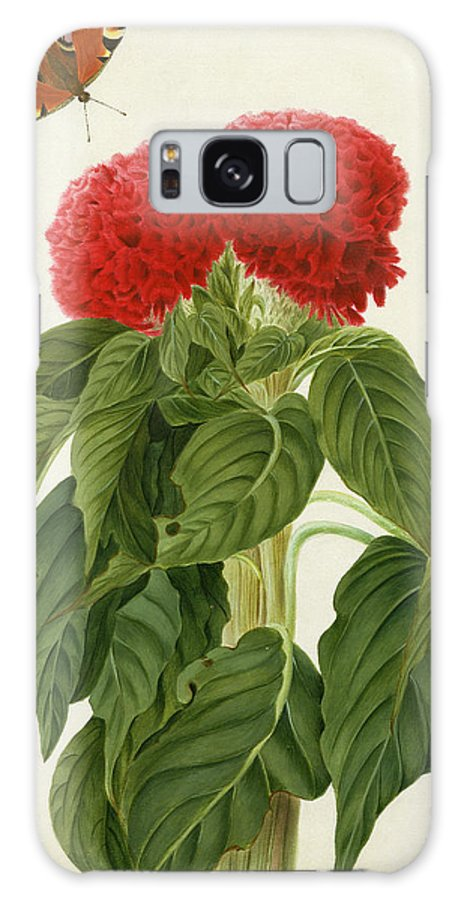 Red Galaxy S8 Case featuring the painting Celosia Argentea Cristata And Butterfly by Matilda Conyers