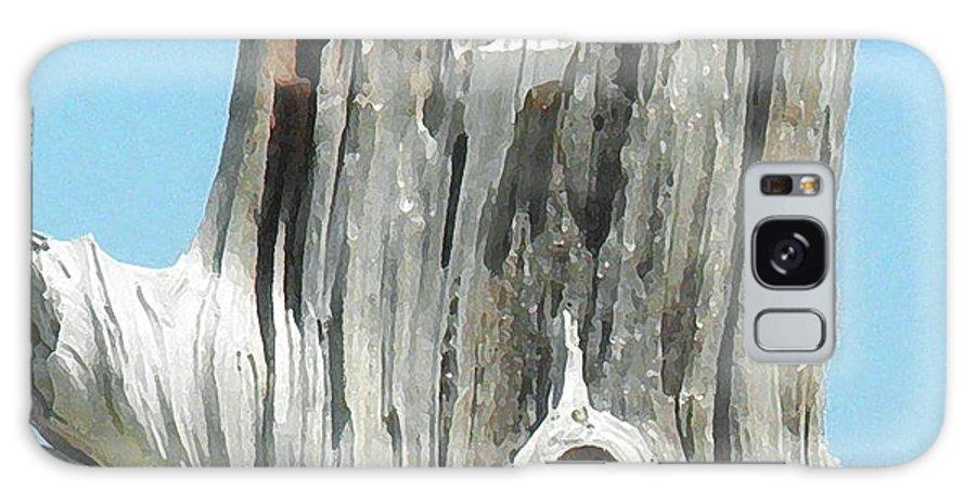 Wood Galaxy S8 Case featuring the digital art Chatham Driftwood by David Klaboe
