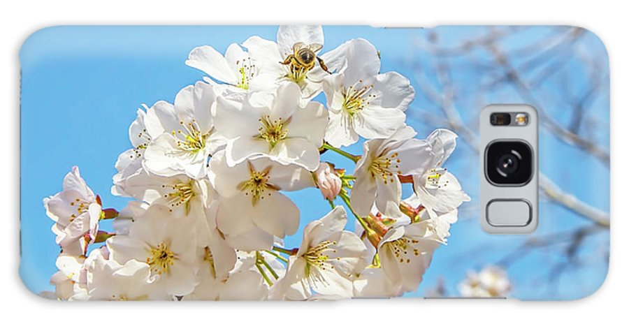Cherry Blossom Galaxy S8 Case featuring the photograph Cherry Blossom And A Bee by Kay Brewer