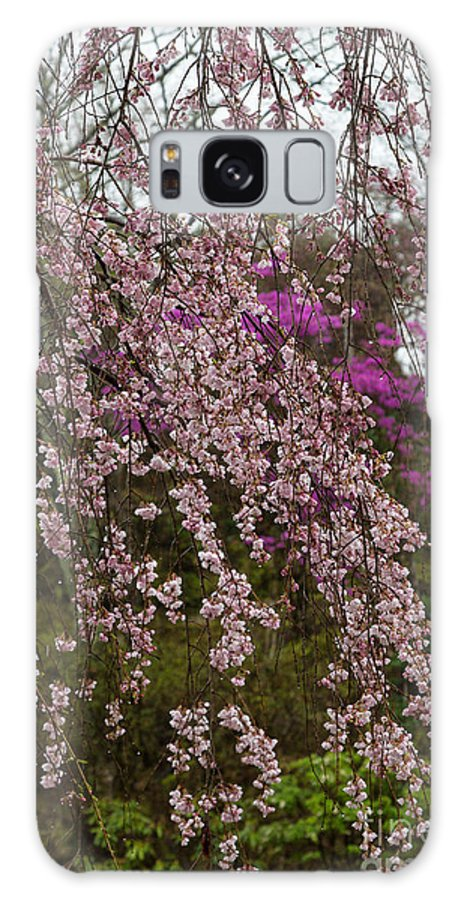 Cherry Blossoms Galaxy S8 Case featuring the photograph Cherry Blossoms In Yoshino- 2 by Rhonda Krause