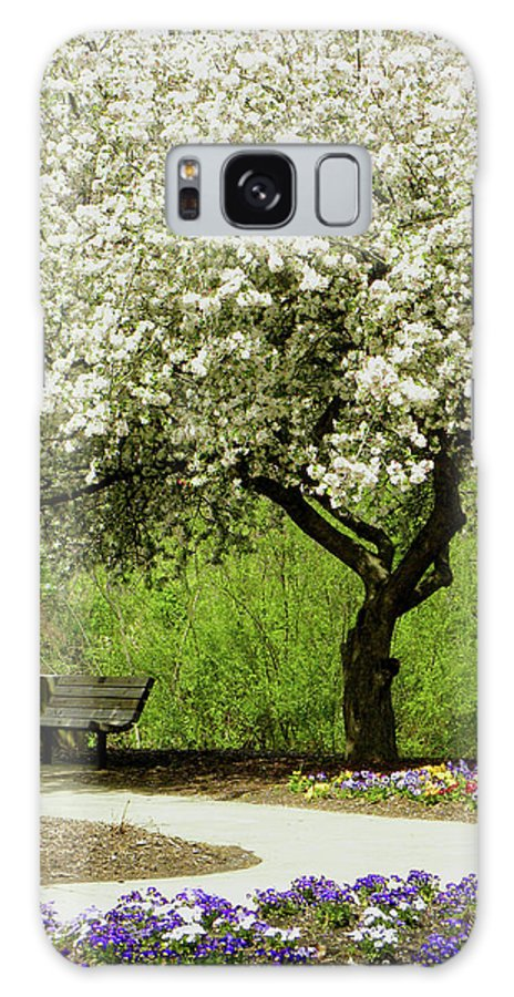 Cherry Tree Galaxy S8 Case featuring the photograph Cherry Tree In Full Bloom by Sandi OReilly