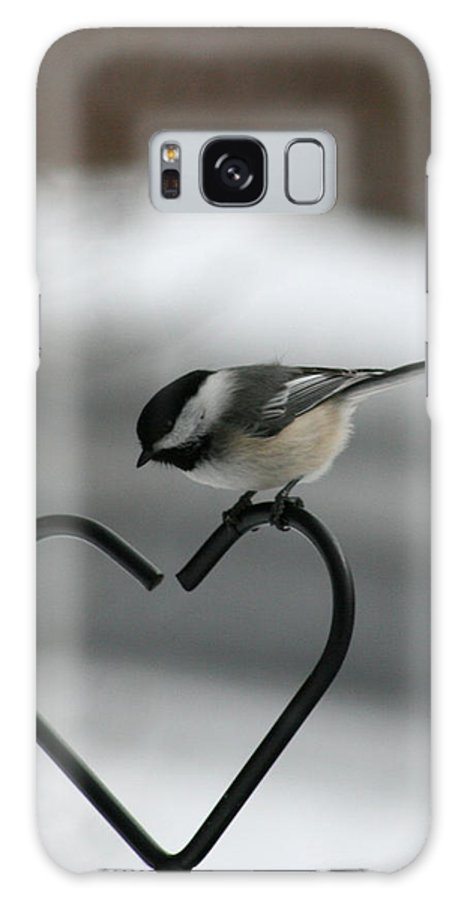 Bird Galaxy S8 Case featuring the photograph Chickadee On Heart by George Jones