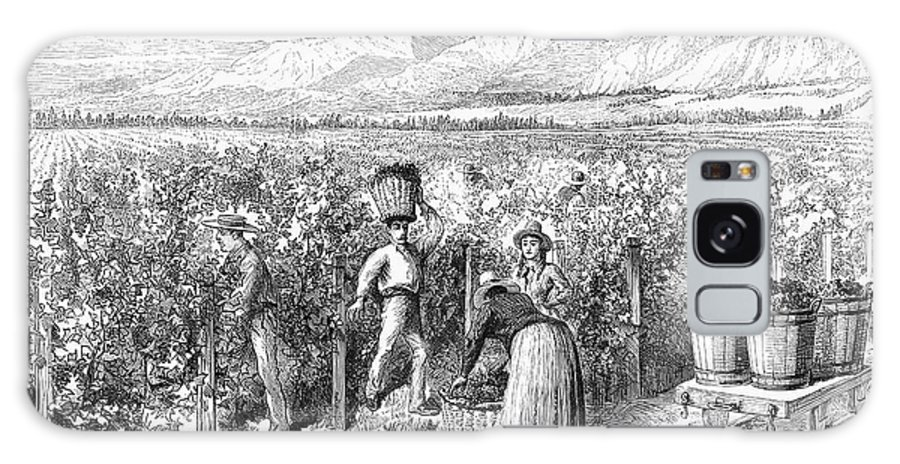 1889 Galaxy S8 Case featuring the photograph Chile: Wine Harvest, 1889 by Granger