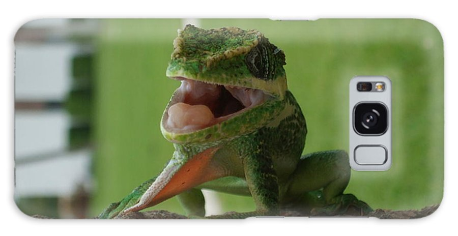 Iguana Galaxy Case featuring the photograph Chilling On Wood by Rob Hans