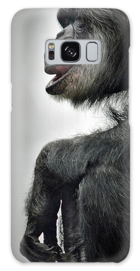 Chimpanzee With A Treat In His Mouth Galaxy S8 Case featuring the photograph Chimpanzee Profile Vignetee Effect by Jim Fitzpatrick