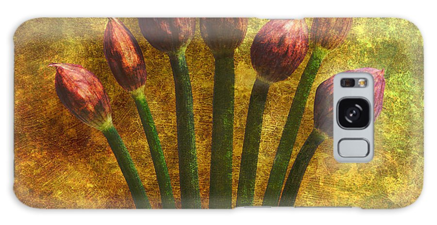 Texture Galaxy Case featuring the digital art Chives Buds by Digital Crafts