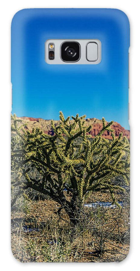 Cactus Galaxy S8 Case featuring the photograph Cholla by Rockland Filmworks