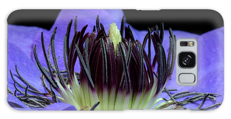 Nature Galaxy S8 Case featuring the pyrography Clematis 8 by Robert Morin