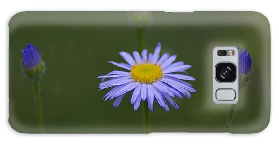 Flowers Galaxy S8 Case featuring the photograph Close Friends by Ben Upham III
