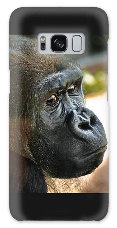 Gorilla Galaxy Case featuring the photograph Close Up Portrait of Gorilla by Aaron Sheinbein
