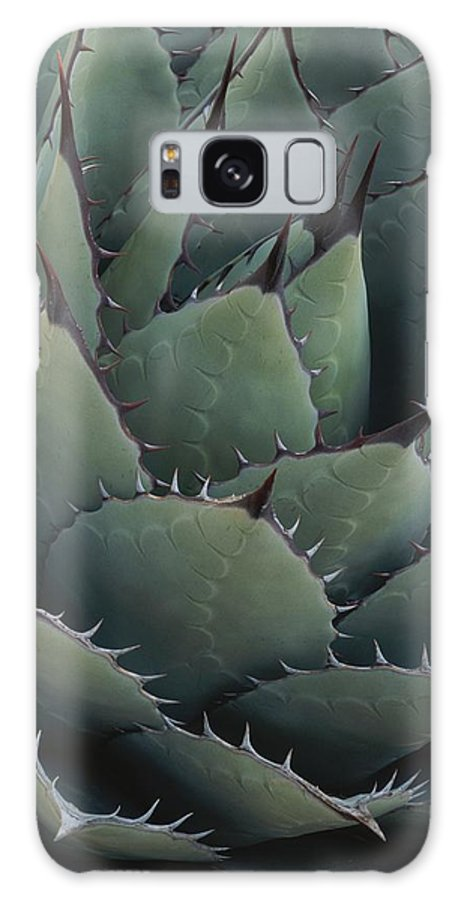 North America Galaxy S8 Case featuring the photograph Close View Of An Agave Plant by Michael Melford