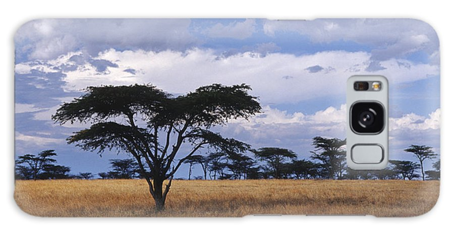 Africa Galaxy S8 Case featuring the photograph Clouds Over The Masai Mara by Sandra Bronstein
