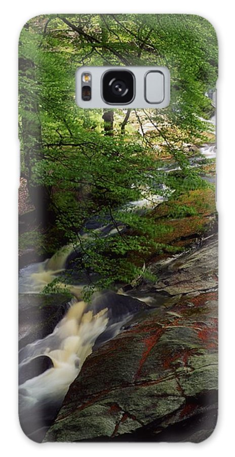 Deciduous Galaxy S8 Case featuring the photograph Cloughleagh Wood, Kilbride, Ireland by The Irish Image Collection
