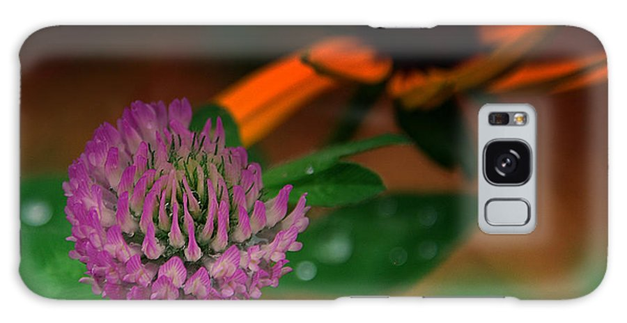 Clover Galaxy S8 Case featuring the photograph Clover In My Yard by Susanne Van Hulst