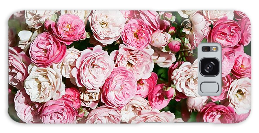 Rose Galaxy Case featuring the photograph Cluster Of Roses by Dean Triolo