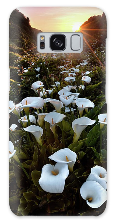 Big Sur Galaxy S8 Case featuring the photograph Coastal Calla Lilies by Ryan Smith