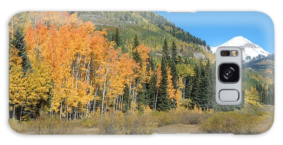 Aspen Galaxy S8 Case featuring the photograph Colorado Gold by Jerry McElroy