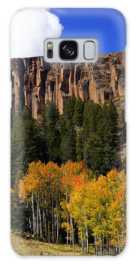 Fall Colors Galaxy S8 Case featuring the photograph Colorful Canyon by Marty Koch