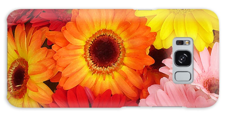 Gerber Daisy Galaxy Case featuring the painting Colorful Gerber Daisies by Amy Vangsgard