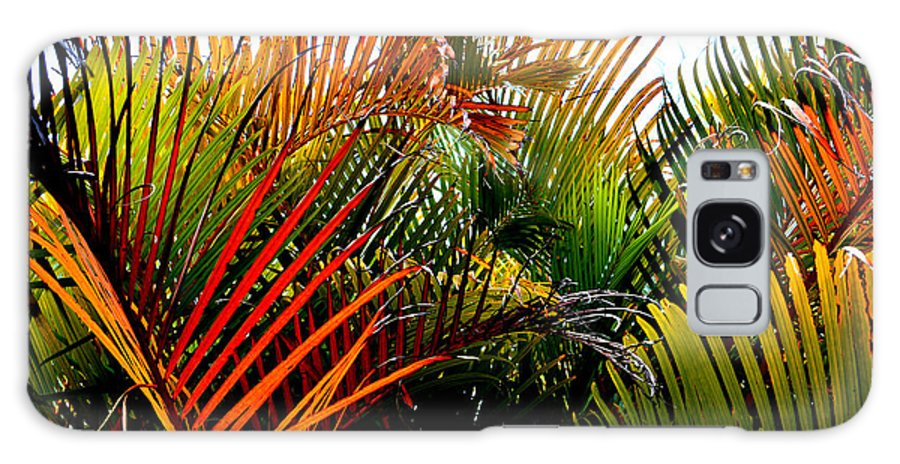Palm-tree Galaxy S8 Case featuring the photograph Colorful Palm Leaves by Reva Steenbergen
