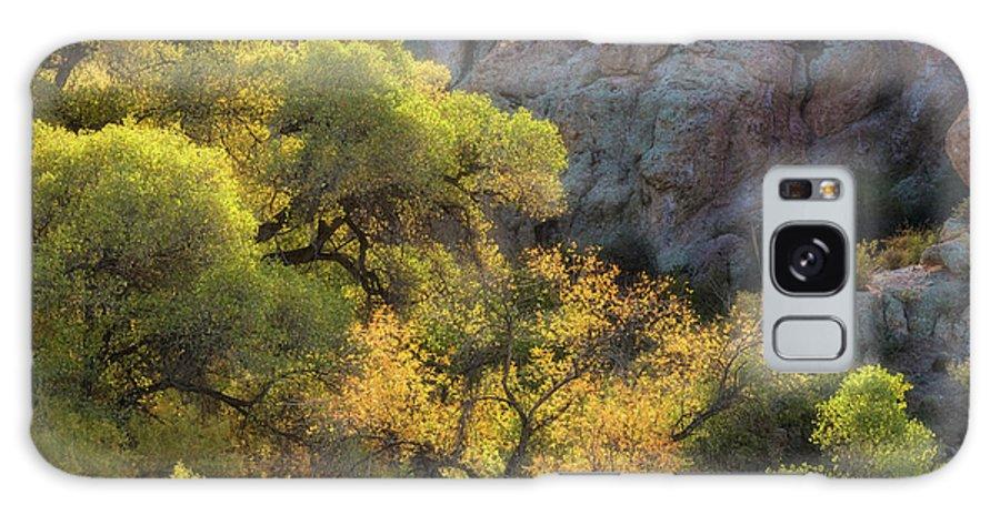 Arizona Galaxy S8 Case featuring the photograph Colors Of Autumn In The Sonoran by Saija Lehtonen