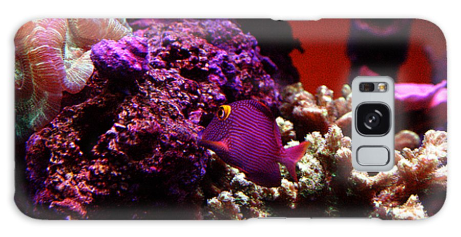 All Rights Reserved Galaxy Case featuring the photograph Colors of Underwater Life by Clayton Bruster