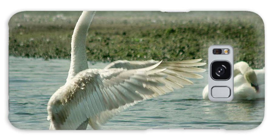 Swans Galaxy S8 Case featuring the photograph Come On...its Easy Like This See...... by Martina Fagan