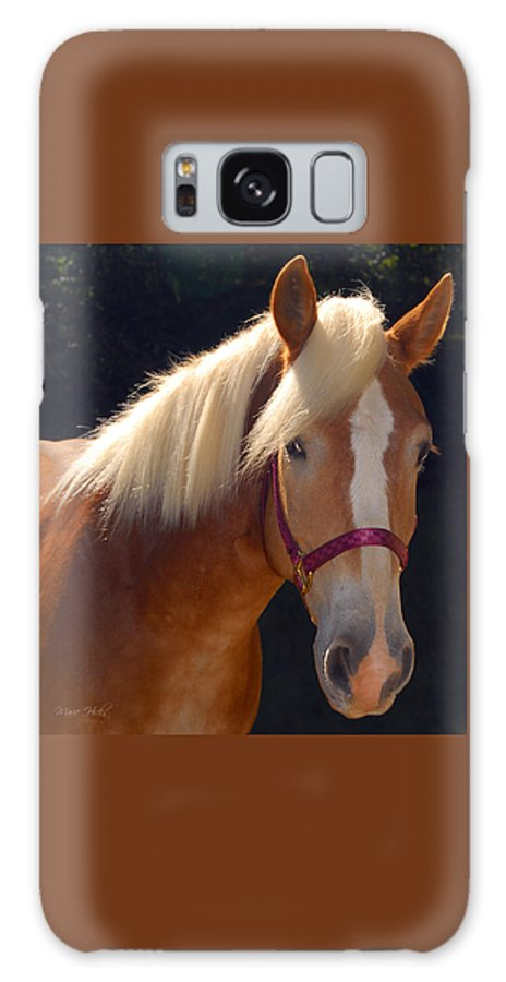 Haflinger Galaxy S8 Case featuring the photograph Come Play With Me by Marie Hicks