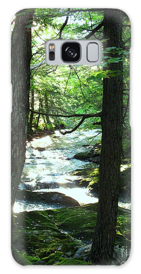 Water Galaxy S8 Case featuring the photograph Peace And Comfort by Sybil Staples