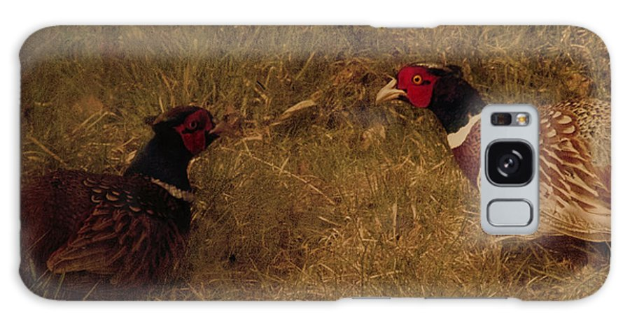 Pheasant Galaxy S8 Case featuring the photograph Conversations by Angel Ciesniarska