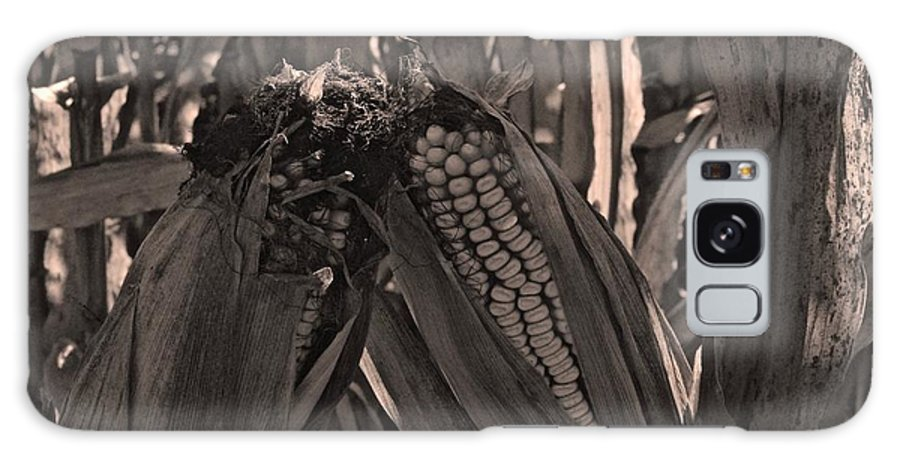 Tiwago Galaxy S8 Case featuring the photograph Corn Portrait by Photography by Tiwago