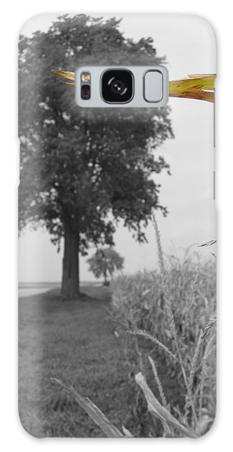 Landscape Galaxy Case featuring the photograph Corn Tree by Dylan Punke