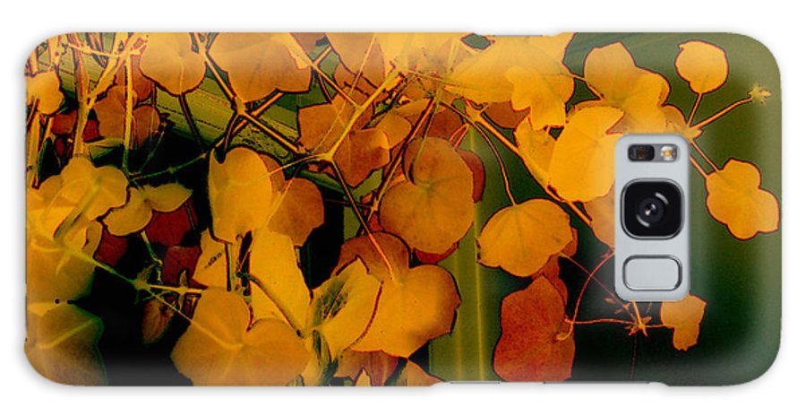 Autumn Galaxy S8 Case featuring the digital art Corner In Green And Gold by RC DeWinter